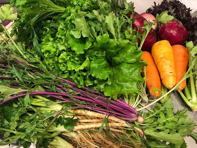 西湘の有機野菜と加工品「はなまる農園」